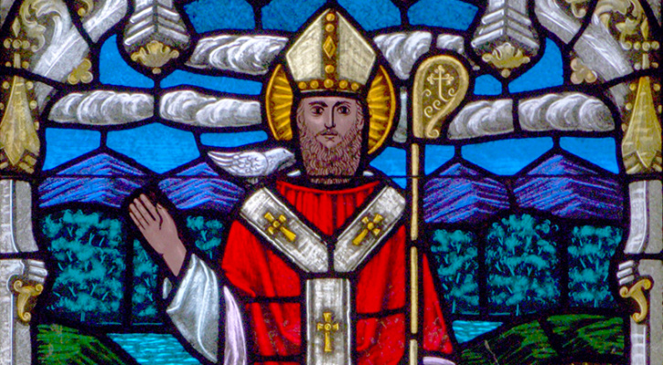 Stained glass of Saint David of Wales, All Saints Episcopal Church, San Francisco, CA